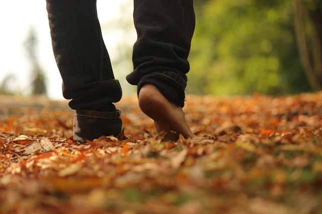 walk-2664125_640